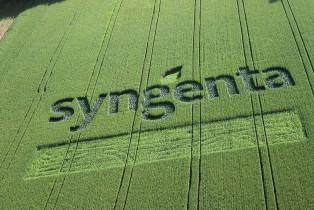 Agrochimie : Syngenta décline l'offre de rachat de Monsanto