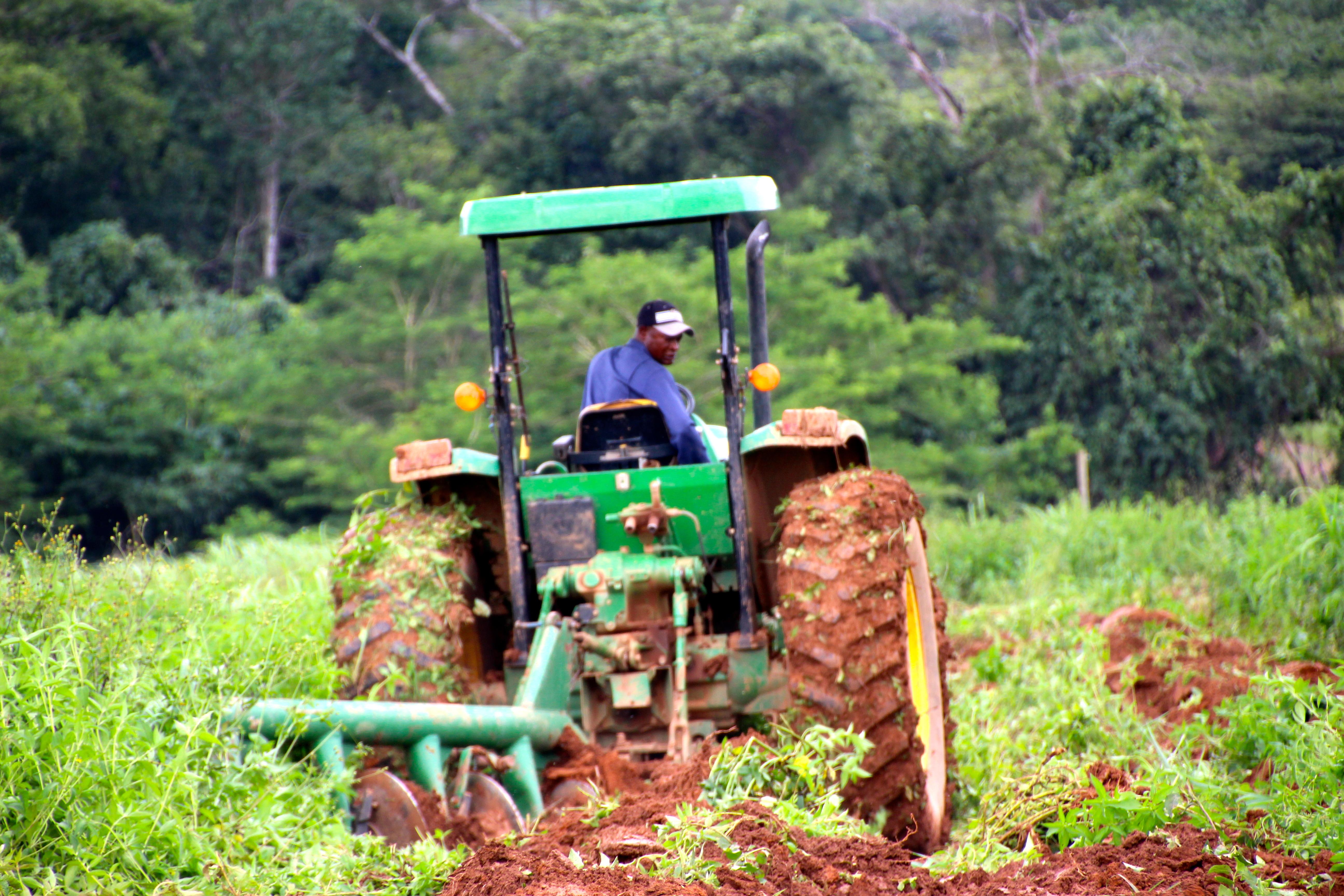 l agriculture ivoirienne s duit les investisseurs