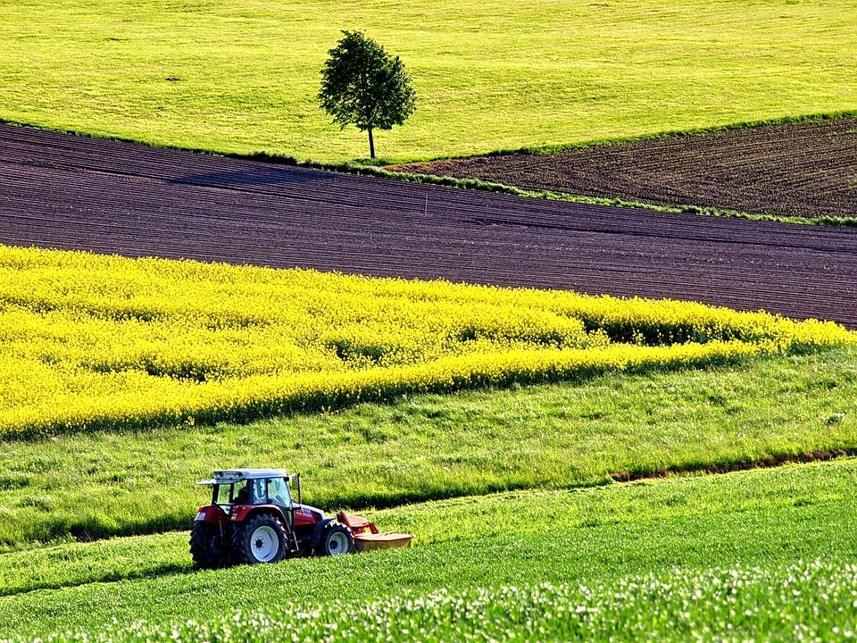 agriculture-glyphosate-cout-substitut-naturel
