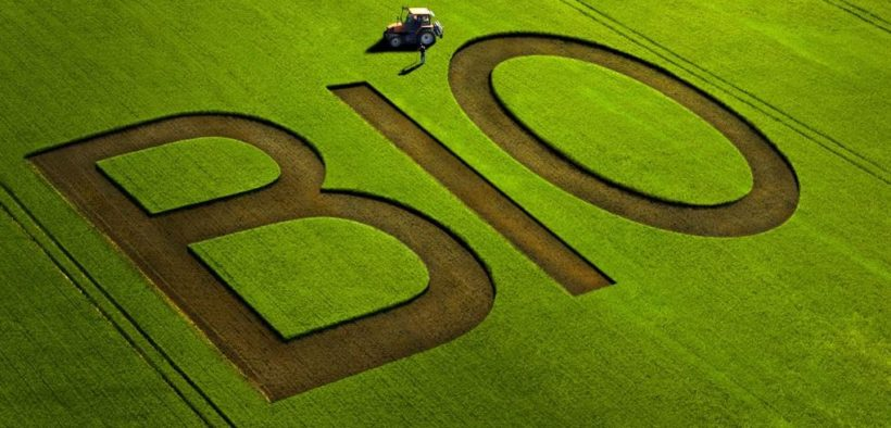bio-agriculture-monde-france